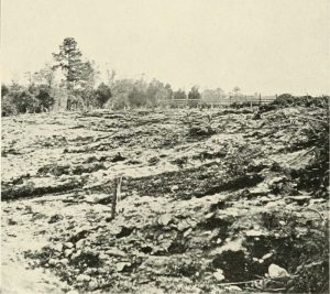 Earthworks photographed after the battle